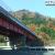箱根新道の高架下。旧東海道から眺める紅葉