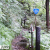 登山道なのに国道の標識がある酷道289号線 甲子山登山口