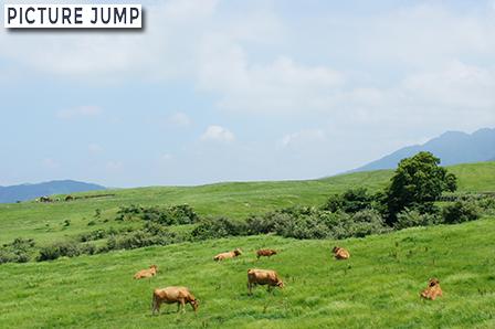 阿蘇パノラマライン 大自然に包まれた爽快ドライブウェイ あか牛の放牧