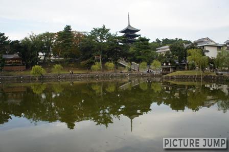 猿沢池の水面に映る五重の塔