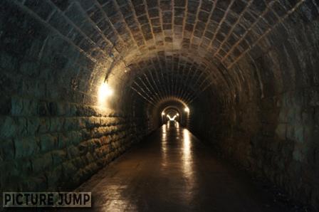 新天城トンネルはあえて使わず、旧天城トンネルで天城峠越え