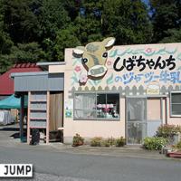 柴田牧場、しばちゃんちのジャージー牛乳で清々しい青空朝食