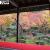 瑞巌山 圓光寺 格子窓越しに眺める庭園 十牛之庭の紅葉