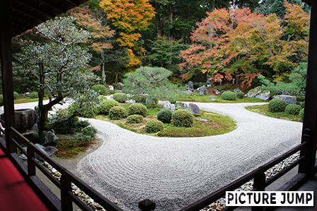 曼殊院門跡 庭園の紅葉