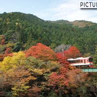 紅葉でオレンジに染まった貴船口駅と叡山電車
