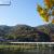嵐山・渡月橋 パッチワークのようにカラフルな紅葉で染まる背景の山