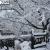 京都・哲学の道の雪化粧。幻想的で別世界のよう