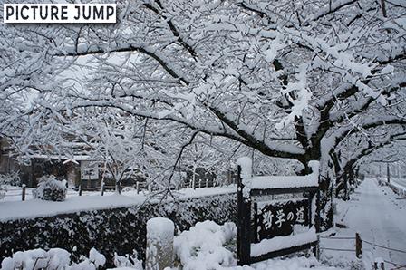 哲学の道 雪景色