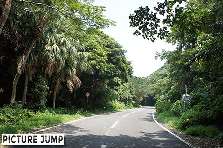 佐多岬ロードパーク制限速度は時速40km/h