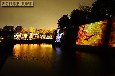 本丸御殿を囲む内堀の石垣に投影された錦鯉と対岸に燃え盛る桜の木々
