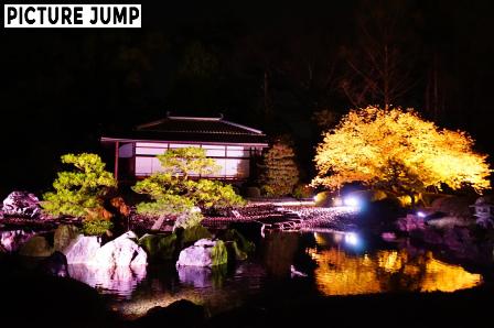 二条城 清流園 桜ライトアップ
