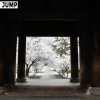 南禅寺 雪化粧 モノクロ写真と見間違えてしまうほどの白と黒のコントラスト