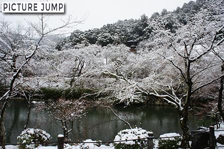 雪に包まれた永観堂・多宝塔