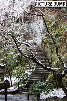 多宝塔の真下から雪の京都市内を一望