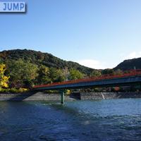 宇治川に架かる宇治橋。橋の袂にある紫式部像と猫の共演。宇治もまた紅葉スポットの1つ