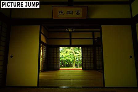 緑に包まれた大徳寺高桐院。誰も居ない客殿を独り占め