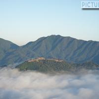 雲海に包まれた天空の城・竹田城。立雲峡第一展望台にて日本のマチュピチュ撮影