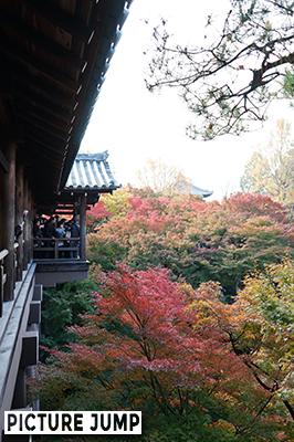 東福寺・通天橋の出っ張り部分は大混雑