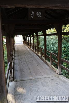 東福寺三名橋の3つ目、偃月橋は秋の紅葉の時期も緑色