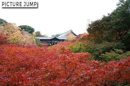 東福寺 紅葉 三名橋・臥雲橋から通天橋を眺めて