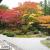 御寺 泉涌寺の紅葉は特別拝観・御座所の縁側から眺める庭園が絶景