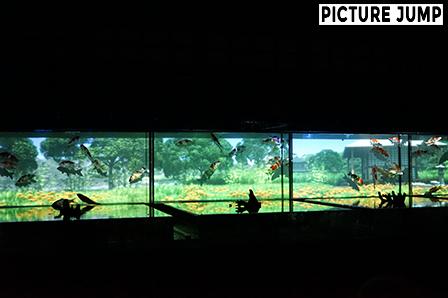 絵巻水槽 京都・二条城 アートアクアリウム城 ~京都・金魚の舞~ 2014