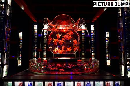 巨大金魚鉢「花魁」 京都・二条城 アートアクアリウム城 ~京都・金魚の舞~ 2014