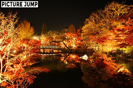 永観堂ライトアップ 極楽橋から眺める法生池の紅葉景色