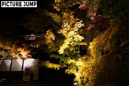 紅葉で覆われた永観堂 石碑と閉ざされた総門