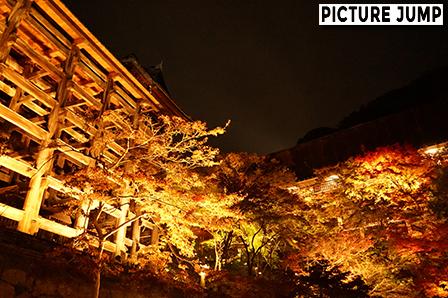 京都・清水寺 紅く染まった紅葉ライトアップ 清水の舞台