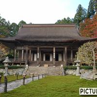 京都・大原 勝林院の紅葉。昼間の撮影だけでは物足りずライトアップも
