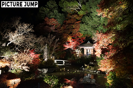 京都・山科 毘沙門堂 晩翠園 透き通った水に映し出された観音堂や紅葉