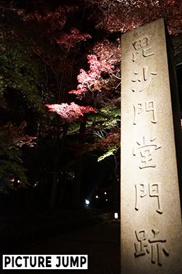 京都・山科 毘沙門堂 紅葉のライトアップ