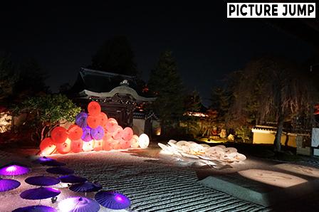 枯山水の方丈前庭「波心庭」ライトアップ 赤・白・紫に色付く和傘の演出