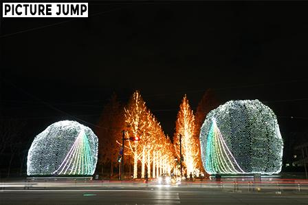 京都ローム イルミネーション シンボルツリー「ヤマモモの木」通行する車のライトも光の線として景観の一部に