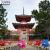 旧嵯峨御所大覚寺門跡・大沢池に映る紅葉と心経宝塔前、圧巻の風車