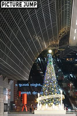烏丸小路広場側から、大階段のイルミネーションをバックに巨大クリスマスツリー撮影