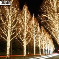 京都ローム イルミネーション 通行する車のライトも光の線として景観の一部に