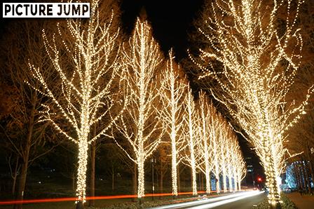 京都ローム イルミネーション 光のプロムナード 通行する車のライトも光の線として景観の一部に