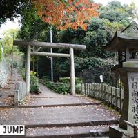 日向大神宮 4つの鳥居と秋から春に咲き続ける十月桜と紅葉