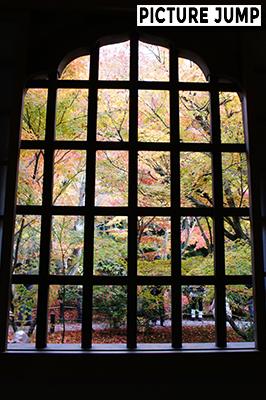 圓光寺 格子窓越しに眺める紅葉の庭園