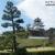 NHK大河ドラマ「功名が辻」でも有名になった掛川城・桜の季節