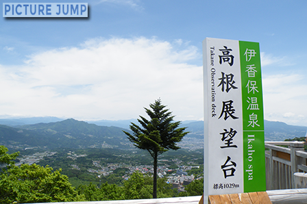 伊香保温泉・高根展望台 1本だけ長く伸びた木が印象的